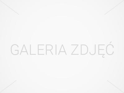 galeria-4